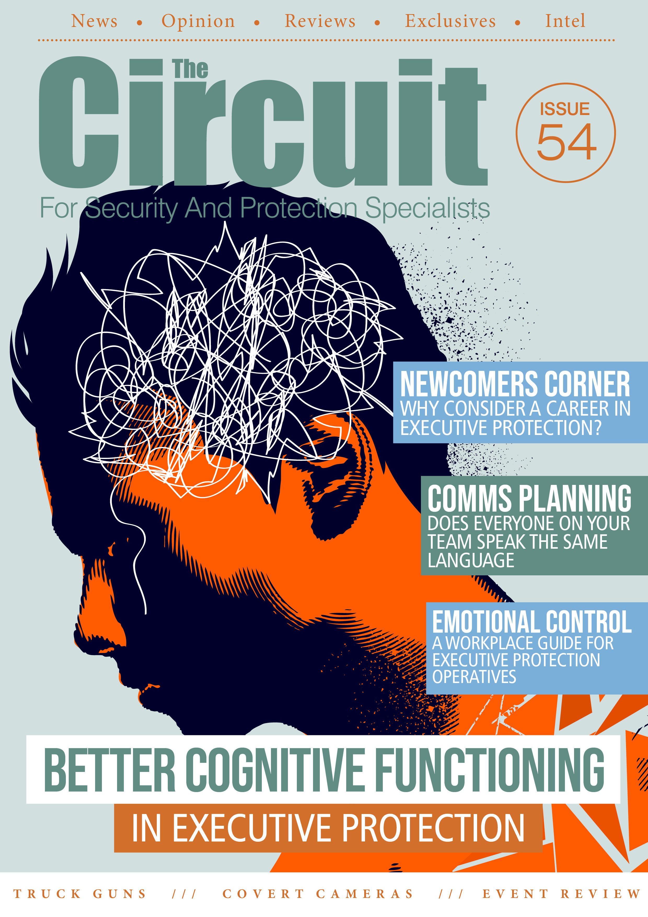 Cognitive Functioning on Issue 54
